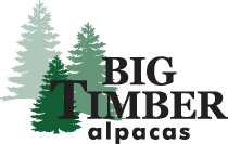 Big Timber Alpacas
