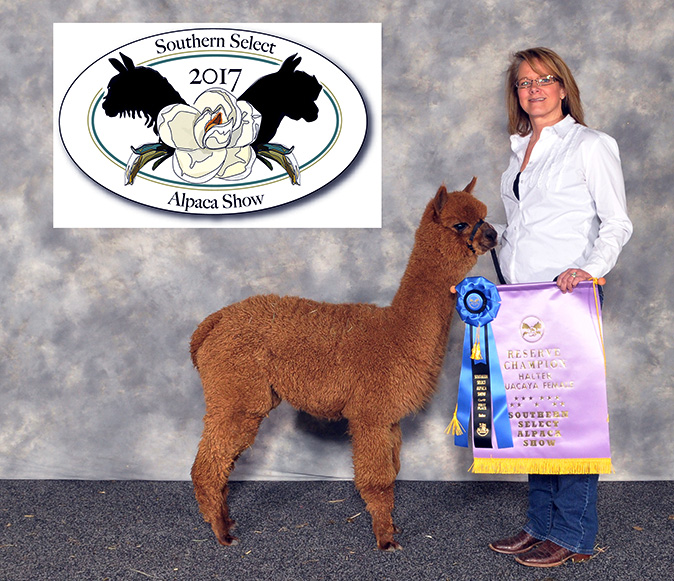 NorTex Alpacas, LLC.