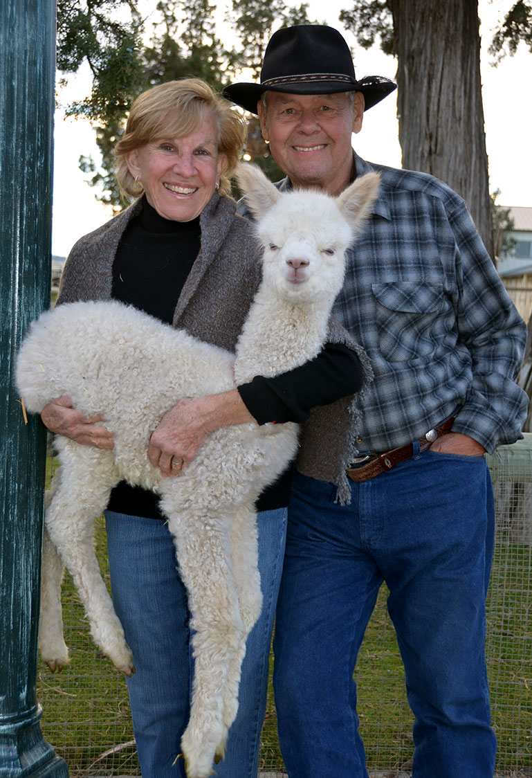 Alpacas Country Estate