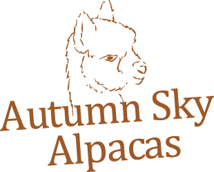 Autumn Sky Alpacas